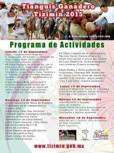 programa tianguis 2015